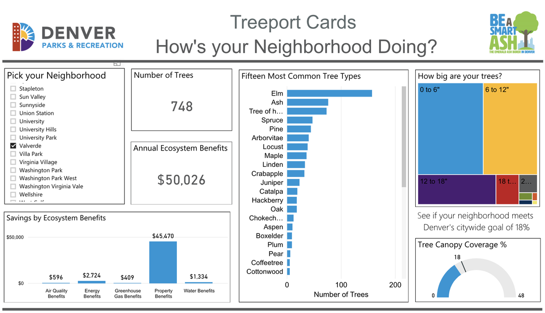 Example Image of the Treeport Cards showing charts and information on tree coverage in various neighborhoods.