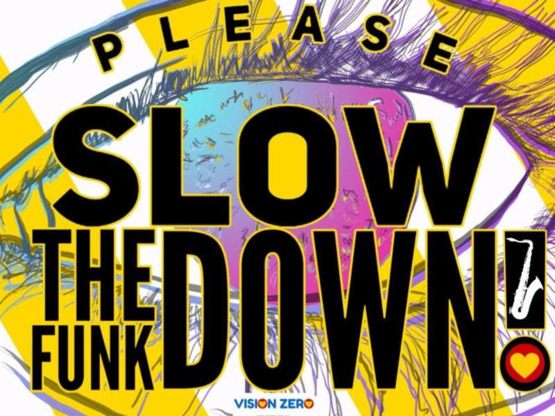 Please slow the funk down yard sign